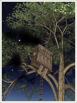 the magic tree house series brilliant books for 79 year olds